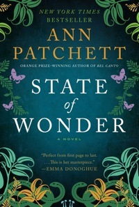 state_of_wonder